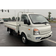 long range and very cheap electric truck