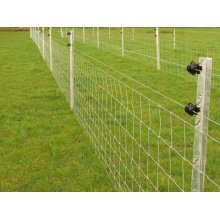 Advanced teknologi wire twin fencing