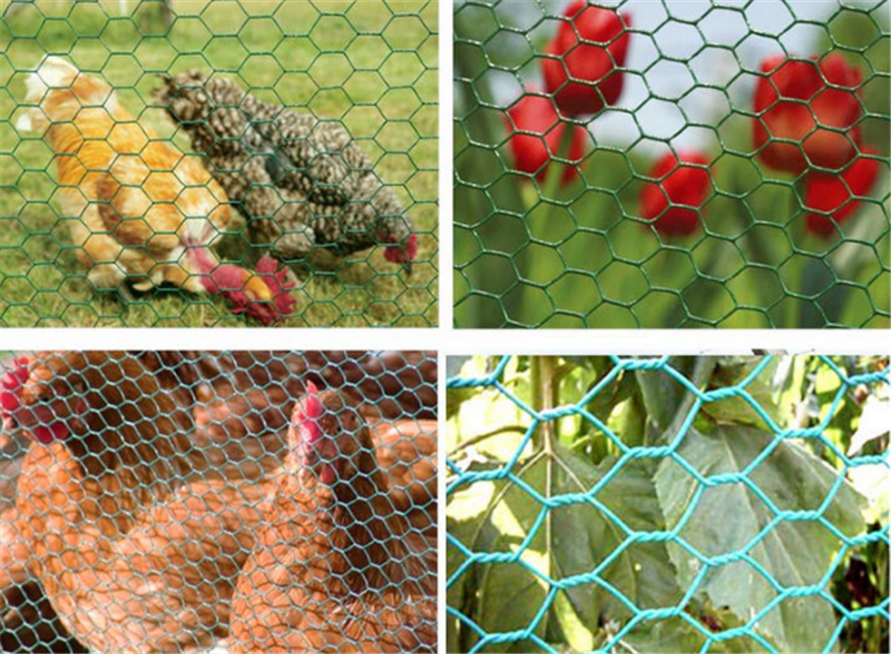 hexagonal chicken netting mesh