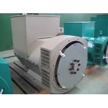 Китай 150кВт одноступенчатый бесщеточный генератор Stamford (JDG274G)