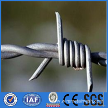 Hot dipped galvanized barbed wire 16x16