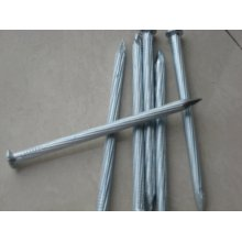 ODM for Zinc Galvanized Roofing Nails Galvanized Concrete Steel Nails supply to United States Manufacturers