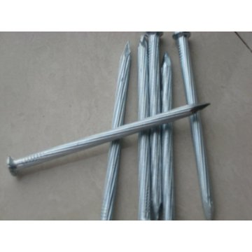 Galvanized Concrete Steel Nails