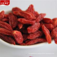 Red new fresh distributor herbal type goji berry