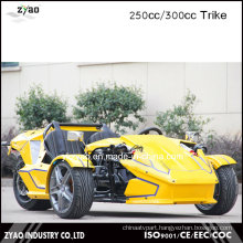 300cc Ztr Trike for Adult Tricycle 24HP Trike Roadster 3 Wheel Car for Sale