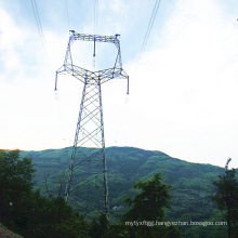 220 kV Owl-Type Angle Steel Power Transmission Tower