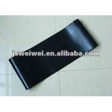 PTFE fusing belt