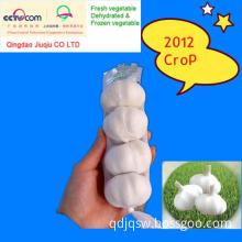 Fresh Organic Garlic (EU quality)-Newest
