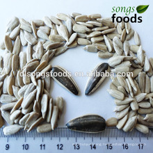 Sunflower Meal, 5009 Sunflower Seeds Kernels