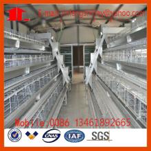 Gaiola da galinha da camada da exploração avícola em China