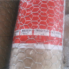 Hot-dip Galvanized Hexagonal Wire Mesh