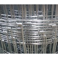 economical iron wire mesh fences from popular factory from China