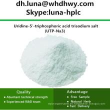 China CAS: 19817-92-6 UTP-Na3 / Uridina-5'-Ácido Trifosfórico Sal Trisódica
