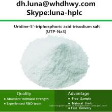 China CAS: 19817-92-6 UTP-Na3 / Uridina-5'-Trifosfórico Ácido Sal Trissódico