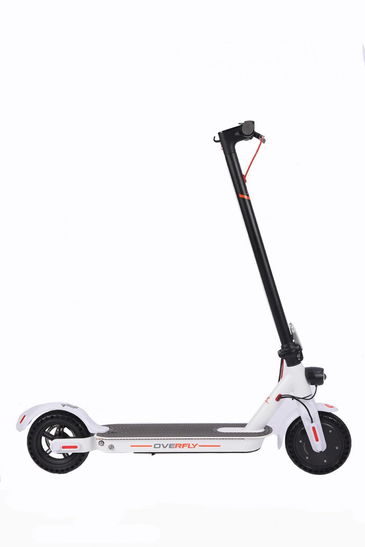 Safe E Scooter