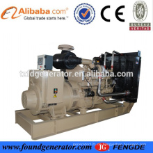 Berühmte Generator Hersteller CE genehmigt 1000kw Generator elektrische mw