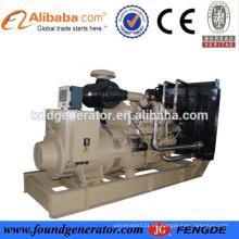 Famoso generador fabricante CE aprobó 1000kw generador eléctrico mw