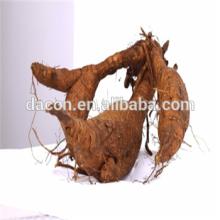 Корень Puerariae корень lоbаtа экстракт порошок