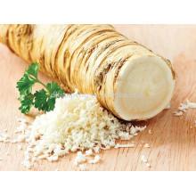 precio de polvo de raíz de rábano picante crudo con grado A