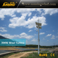 Sunning Wind 300W 12V Low Rpm Permanent Magnet Generator for Monitoring
