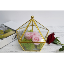 Home Decoration Geometric Glass Terrarium Ecological