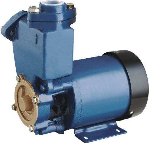 Qs Series Self Priming Peripheral Pump