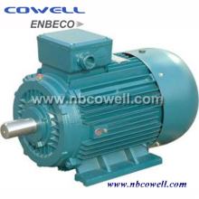 High Efficiency Good Quality Three-Phase Electric Motor
