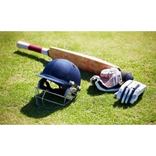 Long Service Life Durable Green Synthetic Cricket Lawn