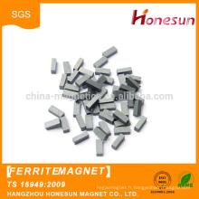 China Manufacturer Wholesale Hot Sale ceramic Ferrite Magnet