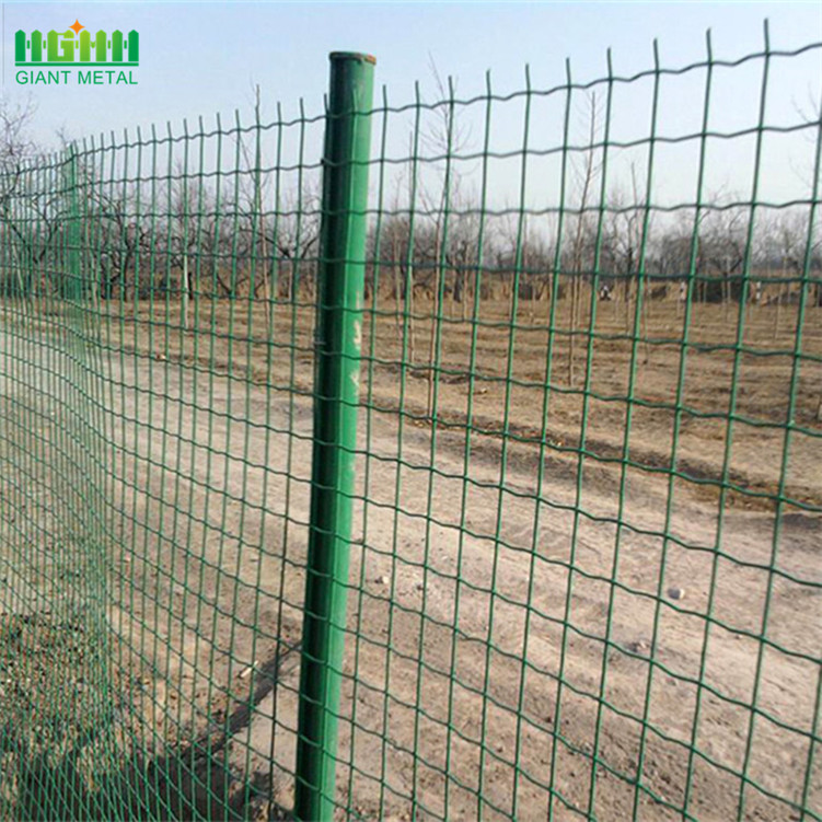 PVC Coated Holland Euro Wire Mesh Fence