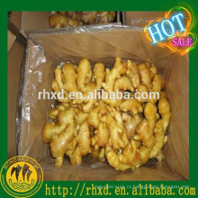 Китайский овощ в Дубаи свежего имбиря