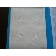 Ceiling Tiles (A566)
