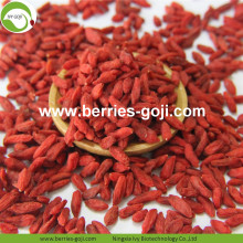 Pour la vente de fruits secs sains conventionnels Goji Berry