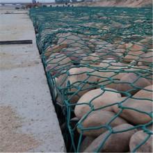 Grenn Plastic Zeshoekig Gabion Wire Mesh