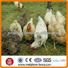 Chicken netting for roofing