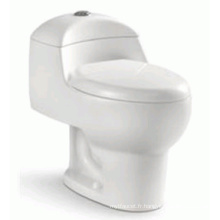 Sanitary Ware Simple Ceramic One Piece Siphon Flushing Toilet (6203)