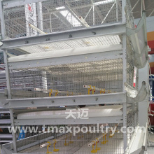 H Typ Automatisches Broiler-Käfig-System
