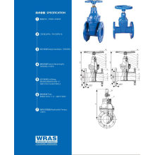 DIN3352 F4/F5 RESILIENT SEATED GATE VALVE
