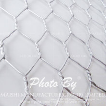 "1"" Galvanized Hexagonal Wire Netting/Chicken Wire Mesh"