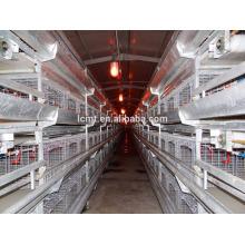 die durchschnittlichen Zuchthühner des Batteriekäfigs für Schichten