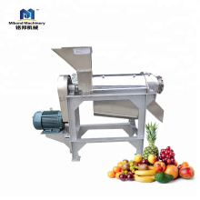Hot Product Professional Made Screw Press Juice Extractor