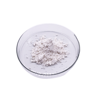 High quality Black garlic extract