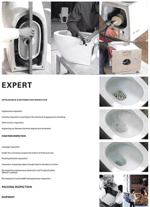 vanity one piece kicking toilet