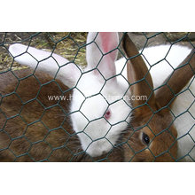 Galvanized Poultry Wire Fences