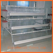 Chicken Cages for Sale/Chicken Cage