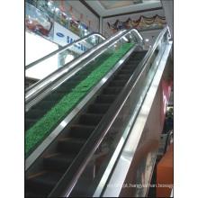 Aksen Escada rolante Tipo de porta interior e exterior