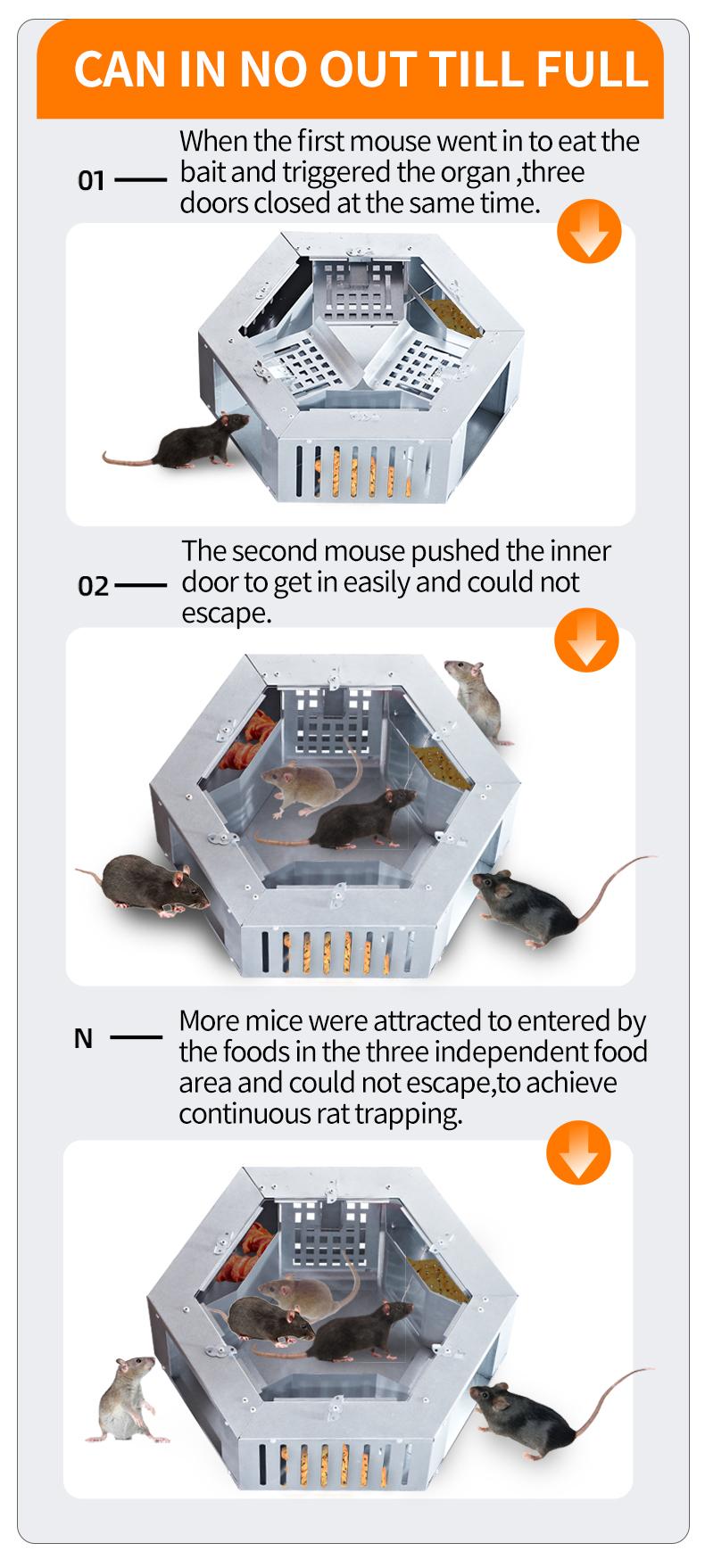 Continous Mouse Trap