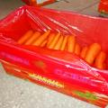 Zanahorias frescas de buena forma de clase A