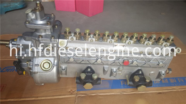 413 fuel injection pump_3