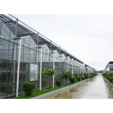 Light stabilizer for greenhouse film covers